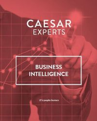 business-intelligence--waarde-creeren-met-data