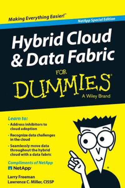 Hybrid Cloud & Data Fabric voor Dummies